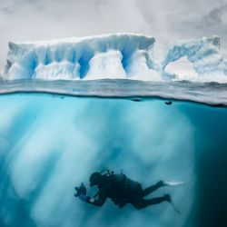 La expedición de Pristin Seas viajó hace casi un año a la Antártida uniendo representantes de Argentina y Chile para relevar sus condiciones. Hoy se verá en un documental de National Geographic.
