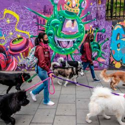 Los paseadores de perros pasan por un muro con grafitis que representan el coronavirus en Bogotá, en medio de la nueva pandemia de coronavirus. | Foto:Juan Barreto / AFP