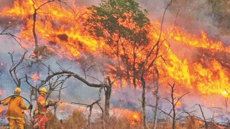 2020_10_11_incendios_cedocperfil
