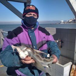 En el Club de Pesca Mar del Plata los concursos de pesca adquieren un nuevo formato virtual.