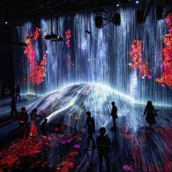 La gente visita una sala de cascada de instalación digital llena de flores que parece fluir sobre una roca, en la exposición TeamLab Borderless en el Museo de Arte Digital Mori Building en Tokio.   Foto:Behrouz Mehri / AFP