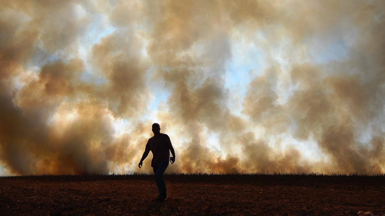Incendios en Amazonas y Pantanal Brasil