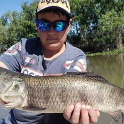 Dónde ir a pescar y cómo viene el pique este fin de semana.