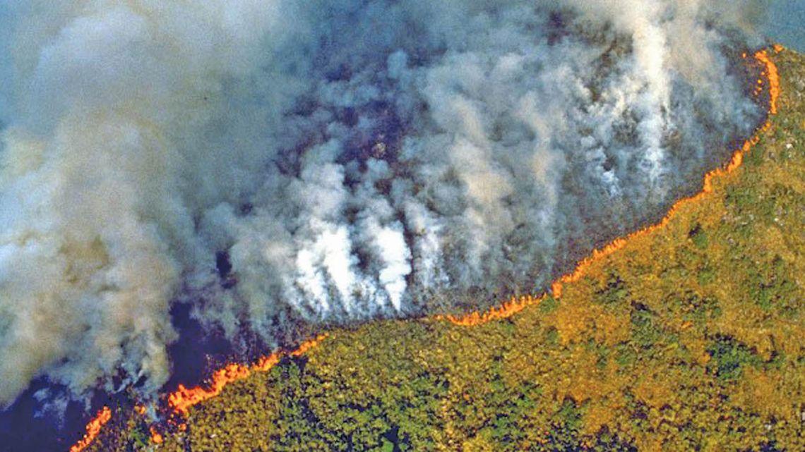 Brazilian rainforest on fire.