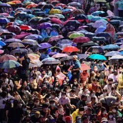 Manifestantes a favor de la democracia se reúnen para un mitin contra el gobierno en Bangkok. | Foto:Mladen Antonov / AFP
