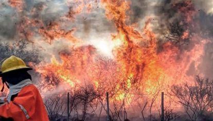 Más de 250 bomberos combaten los incendios forestales