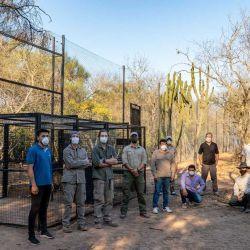 La medida fue tomada con el objetivo de intentar asegurar la preservación del yaguareté en El Impenetrable chaqueño.