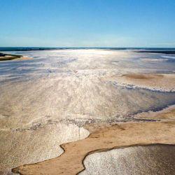 El afluente ha sorprendido a todos debido a que sus aguas están llamativamente claras y cristalinas.