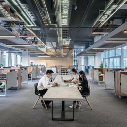 El espacio abierto y colaborativo, mucho más que una tendencia.