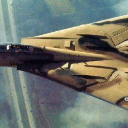Durante la guerra entre Iran e Irák, los F-14 fueron los cazas más modernos que volaron en la contienda.