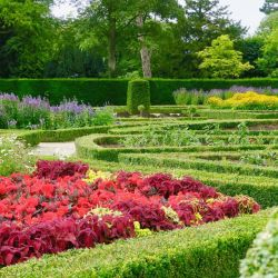 El jardín hundido de Castle Ward, restaurado según el original de 1860. Foto: Daniela David/dpa