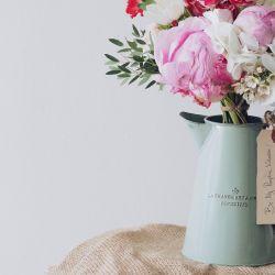 Las flores que nesecitás en tu casa.