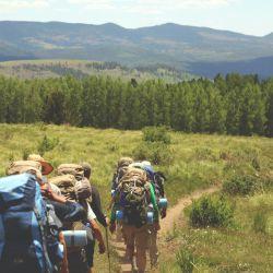 Los viajes grupales (y a destinos cercanos) siguen siendo una tendencia firme.
