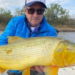 Los dorados de La Paz, Entre Ríos, siguen sin dar tregua en el río Paraná.