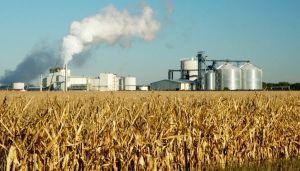 Biocombustibles.