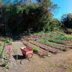 Son muchos los emprendimientos agroecológicos que se llevan a cabo en la isla Martín Garcia.