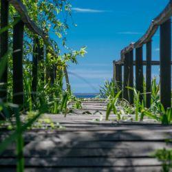 Los paisajes agrestes de la costa bonaerense mezclan flora y fauna con historia.