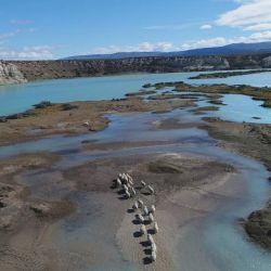 Las represas sobre el Río Santa Cruz amenazan al macá tobiano.