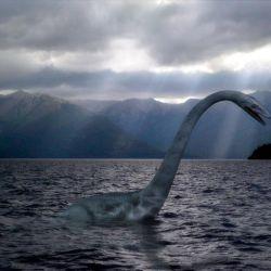 El misterioso animalito acuático figura entre las criaturas mitológicas más emblemáticas de América del Sur.