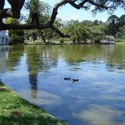 Hoy, a 145 años de su inauguración, el Parque 3 de Febrero es el espacio verde más concurrido de toda la Capital Federal,