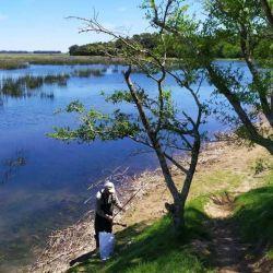 10 buenos pesqueros para ir en busca de tarariras en noviembre