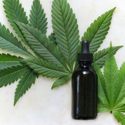 Estas son las propiedades del aceite de Cannabis que no conocías