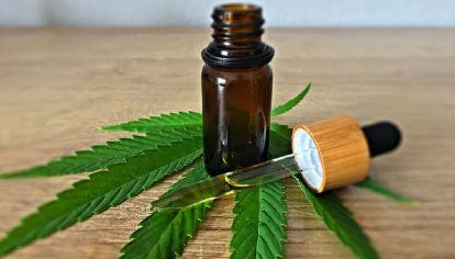 El cannabis y la resina permanecen dentro de la lista de sustancias muy adictivas.