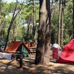 El gobierno bonaerense finalmente autorizó la temporada de campings.