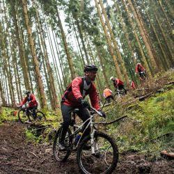 Varios estudios comprobaron que el ciclismo contribuye a la mejora del alzhéimer y reduce el estrés y la ansiedad.