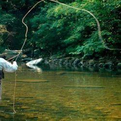 Los primeros 15 días de la temporada de pesca resultaron como una especie de prueba piloto.