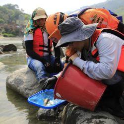 El descubrimiento fue posible gracias al desarrollo de herramientas para estudiar los peces endémicos de Colombia.