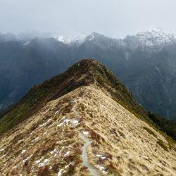 El sendero sobre el filo de la montaña permite vistas panorámicas maravillosas sobre los valles de verde selva y las Kepler Mountains. Foto: Florian Sanktjohanser/dpa