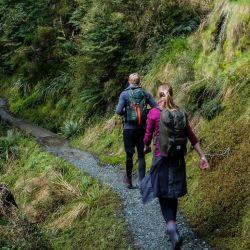 El ascenso hasta el albergue Luxmore conduce a través de acantilados de rocas calcáreas cubiertas de vegetación. Foto: Florian Sanktjohanser/dpa