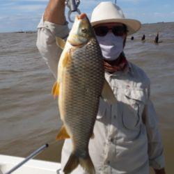 Pesca de grandes bogas en Berisso