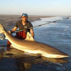 Desde las lagunas al mar, 5 pesqueros que este fin de semana entregaron tarariras, pejerreyes, lenguados y hasta tiburones.