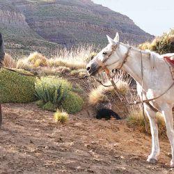 Carlos y su caballo en medio de una larga charla mientras compartimos unos mates.