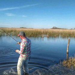 Increíbles tarariras en la laguna El Abuelo