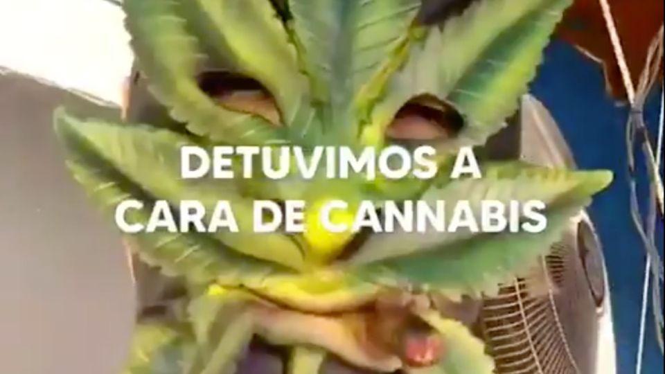 """La policía bonaerense detuvo a """"Cara de Cannabis"""" y Berni celebró el operativo."""