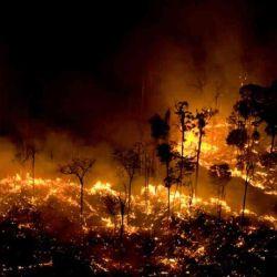 Los permanentes incendios en el Amazonas son la principal causa de la contaminación del aire en Brasil.