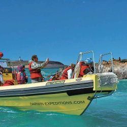 La cormoranera cercana a Isla Pingüino, otra de las posibles excursiones recomendable.
