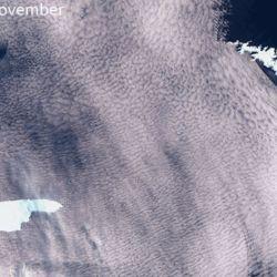 La Bahía de San Andrés alberga a la mayor colonia de pingüino rey del mundo.