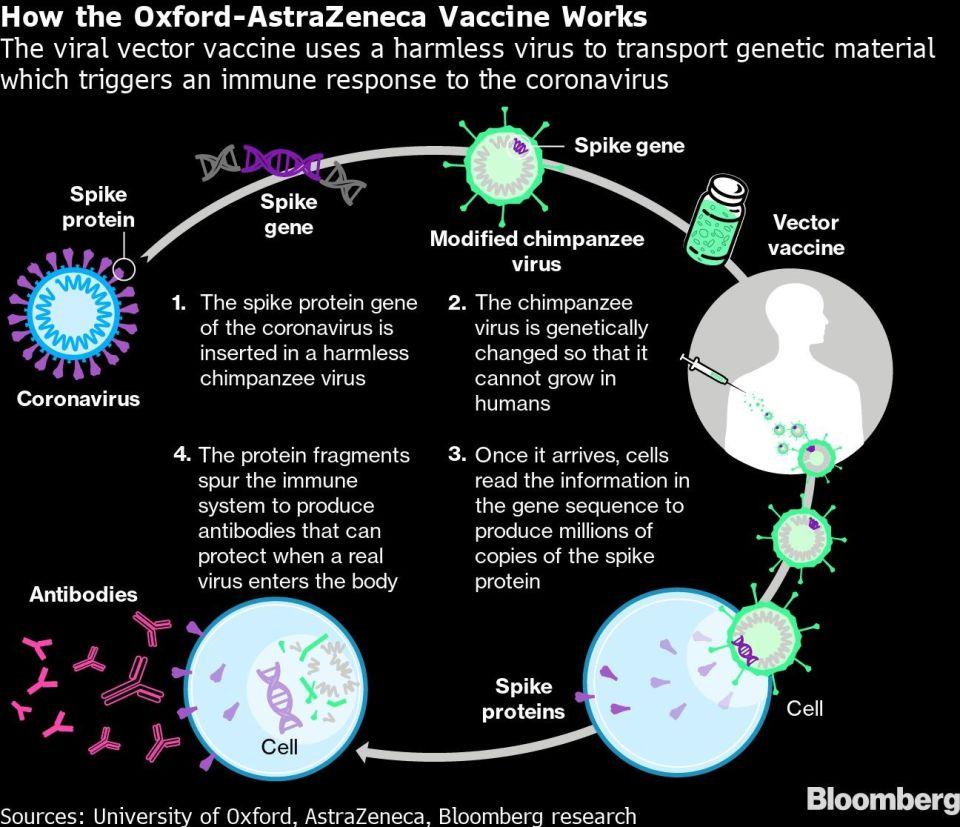 How the Oxford-AstraZeneca Vaccine Works