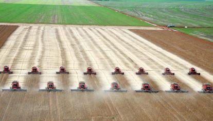Brasil es el principal productor de soja del mundo.