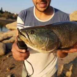 Pesca urbana de tarariras en Córdoba y Villa Carlos Paz