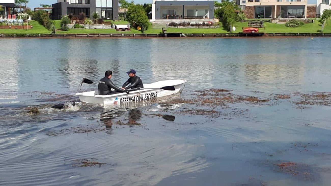 Policía Bonaerense y Prefectura Naval había dispuesto el operativo de búsqueda.