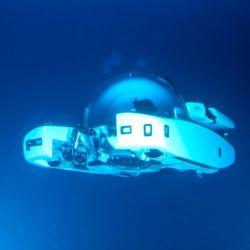 El modelo en cuestión ha sido construido por Triton Submarines, reconocida empresa en el ambiente.
