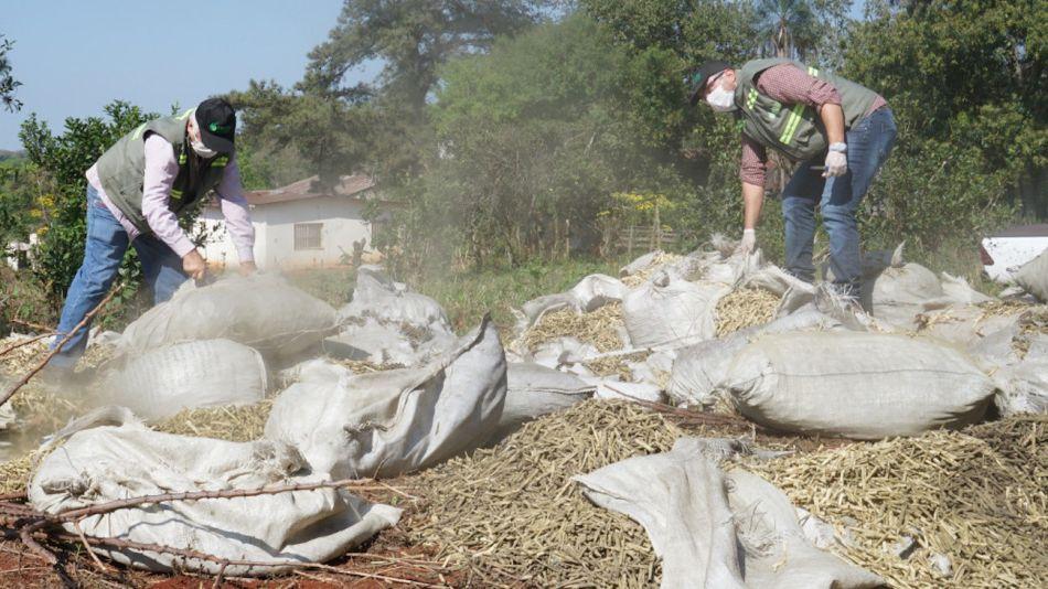 Decomiso de palitos de yerba mate