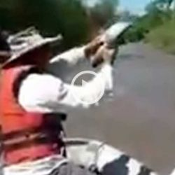 Los pescadores atrapaban a las bogas con sus propias manos.