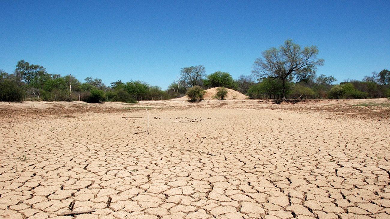 La sequía generó pérdidas productivas en el agro durante 2020.