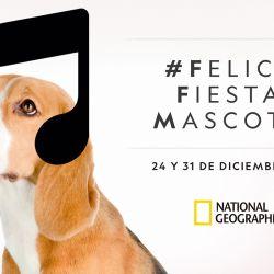 El especial será emitido los jueves 24 y 31 de diciembre, a partir de las 23.00 horas, por National Geographic.